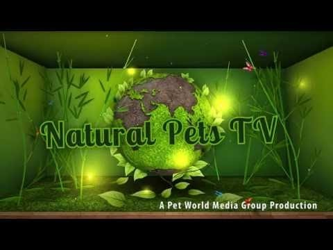 Natural Pets TV - Episode 10 - Senior Pet Care - Needs - Diet, Wellness, Herbs & More