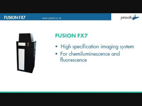 Peqlab - Fusion FX7 system for chemiluminiscence imaging