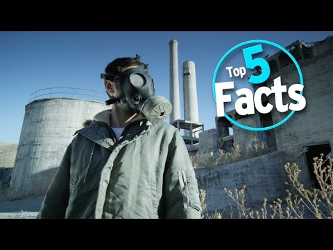 Top 5 Facts about Farting