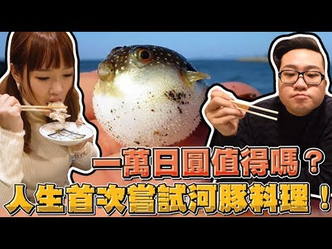 JoemanUS$100 Fugu (Puffer Fish) meal at OSAKA (English substitles)