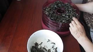 Как заготовить чай из листьев малины. Ферментация.