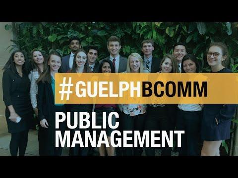 BComm Experience: Public Management