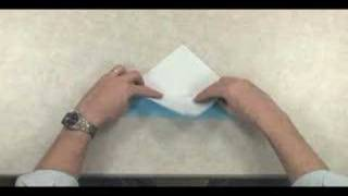 Robert Lang Teaches Origami:  Sparrow - Ima