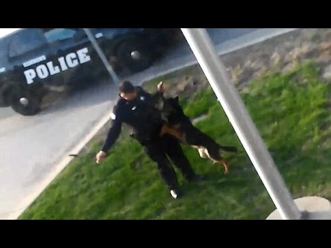 Raw Footage: Police Brutality Compilation #15