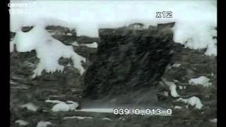 Леопард Leo80M спрятался в каменном гроте
