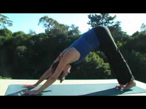 yoga dvd yoga gentle vinyasa flowreal bodywork  youtube