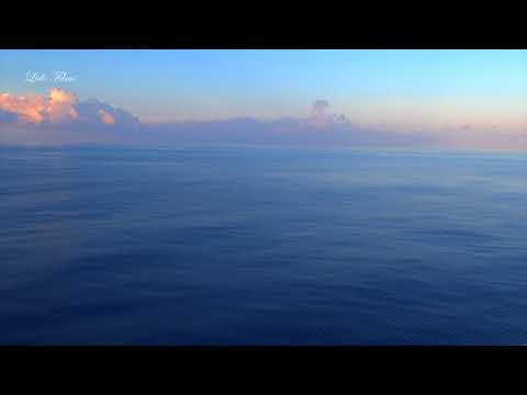 Mystic Bermuda Triangle / Flying Fish / Calm Day in Open Ocean / Nick in Bermuda