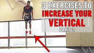 3 Exercises To INCREASE YOUR VERTICAL Pt.2 | JUMP HIGHER | The Lost Breed thumbnail