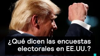 Elecciones EE.UU.: ¿Qué nos dicen las encuestas electorales? - Despierta con Loret