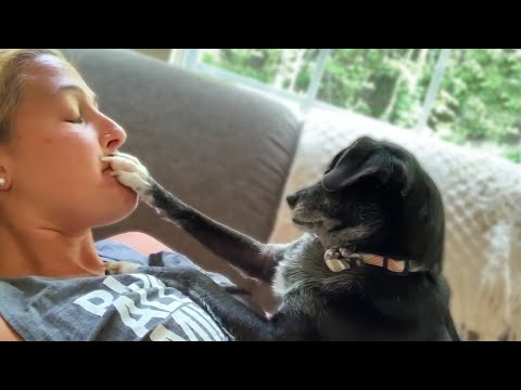 Кошка и массажер видео магазины женского белья в сочи