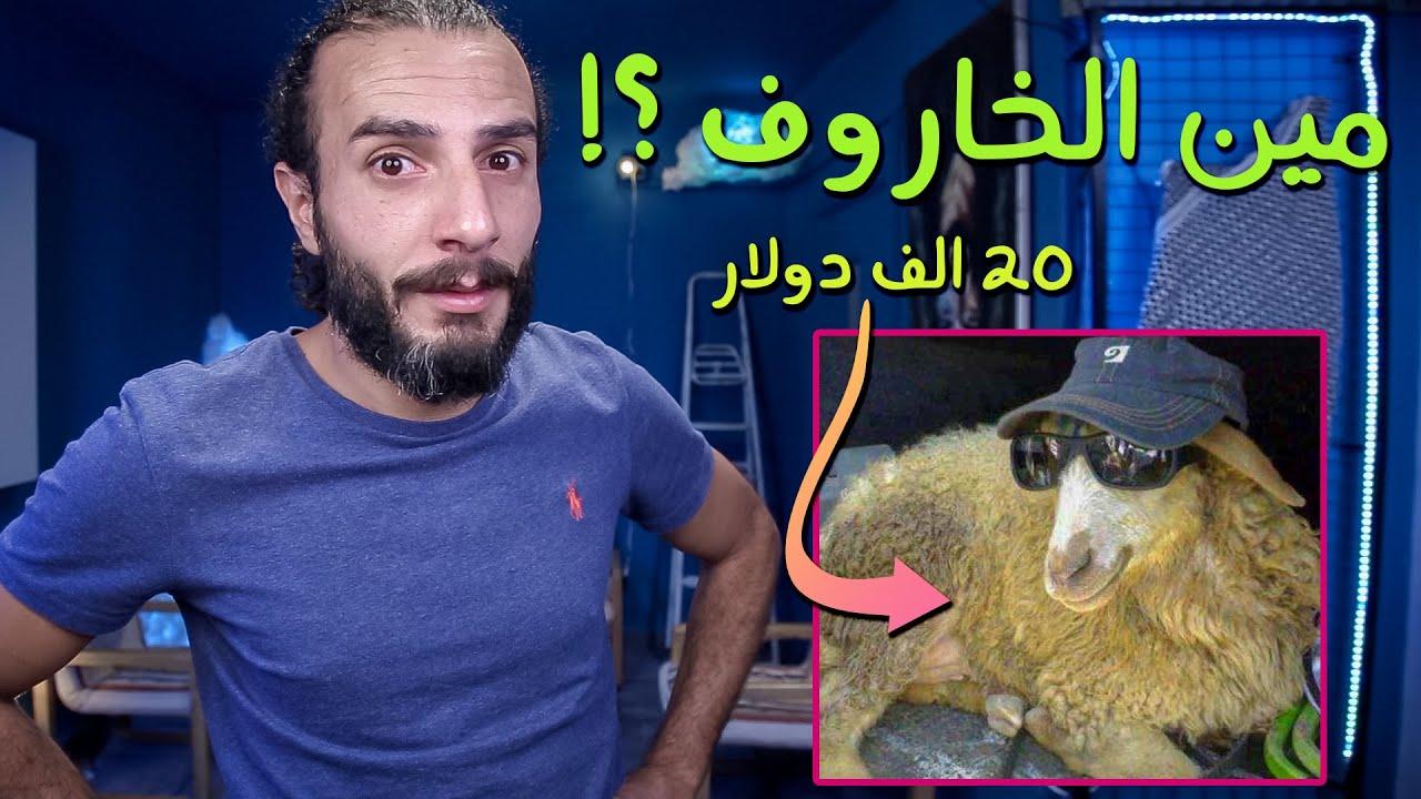 أغلى و أغرب خاروف بالعالم حليبو بترول .. نباع بسعر سبعين الف ريال سعودي