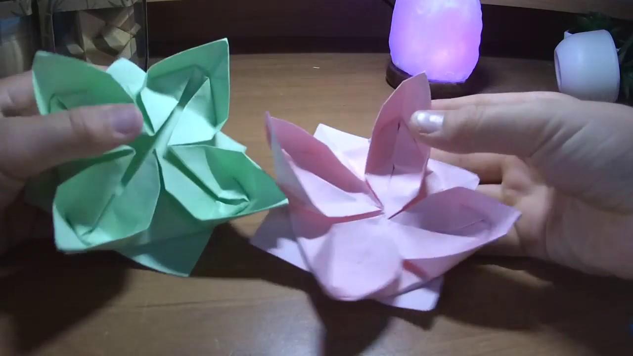 Tuto Origami Fleur De Lotus Fleur Lotus En Papier Youtube