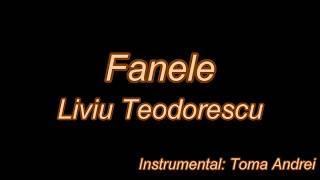 Liviu Teodorescu &amp Dorian Popa feat. Laura Giurcanu - Fanele (karaoke) Toma Andrei