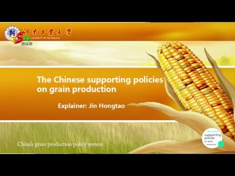 The Chinese supporting policies on grain production