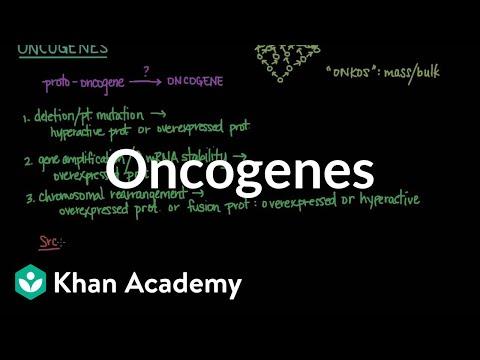 Oncogenes   Biomolecules   MCAT   Khan Academy