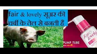 fair lovely सूअर की चर्बी के तेल से बनती है fair lovely make pig fat