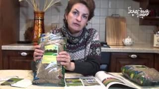 Газон для себя  Как сеять газон на своем участке(, 2016-02-01T13:53:10.000Z)