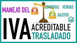 IVA Acreditable e IVA Trasladado  Manejo del IVA en compras y gastos | Contabilidad Básica