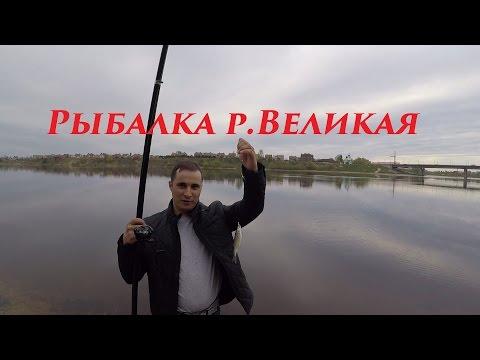 Витебск — Википедия