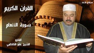 سورة الانعام - عامر الكاظمي