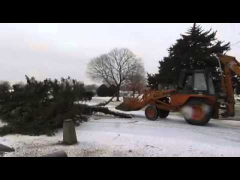 Windy weather caused significant damage to the trees in Mount Hope Cemetary