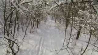 Cross-country skiing - Kharkiv, Ukraine