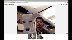 How to Video Chat in ChatWork Using A Chrome or Firefox Browser
