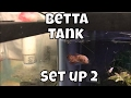 How to keep a Betta Fish Betta Tank Build How to Care for a Betta How to care for a Betta Fish
