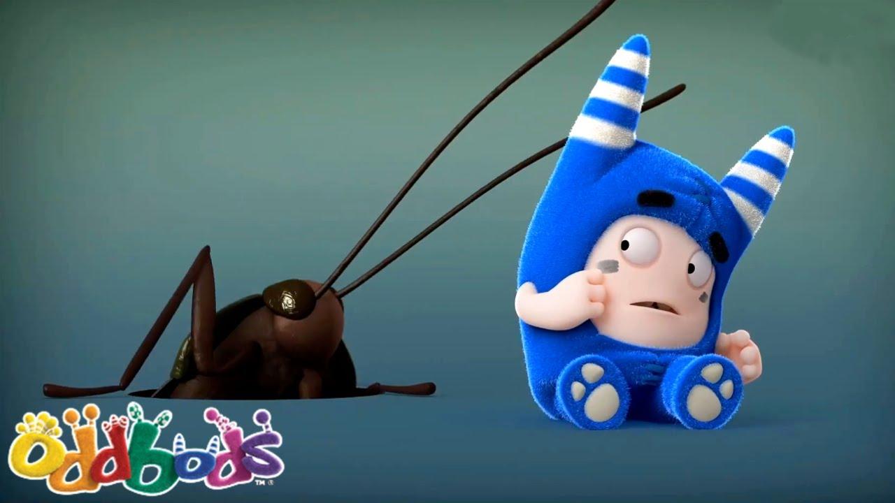 O ZUMBIDO DOS INSETOS | Oddbods | NOVO | Desenhos Animados Engraçados Para Crianças