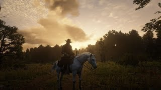 Story Mode Coffee Sundays; Red Dead Redemption 2: Getting Abducted and Taming Wild Tigers