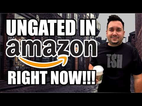 How to get ungated approved in Grocery, Toys & Health and Beauty on Amazon NOW!!!