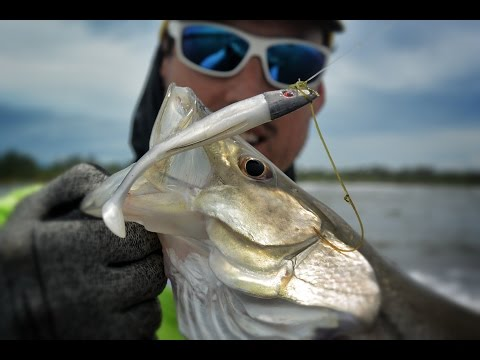 Reality Fishing Panama - Snook In Wading - Bocas Del Toro -  Pesca TV 236 SKY 2017
