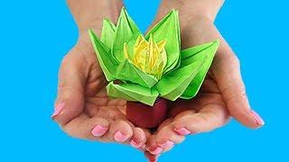 Оригами Мини цветок в горшке из бумаги без клея