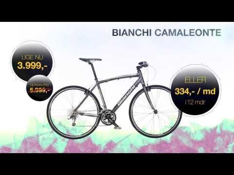 Bianchi Camaleonte