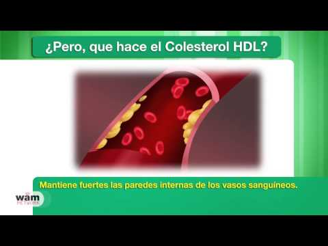 HDL Cholesterol Spanish Voiced