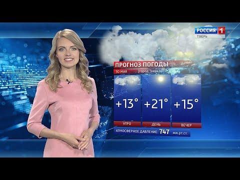 Жители Тверской области завтра смогут наслаждаться солнечной погодой