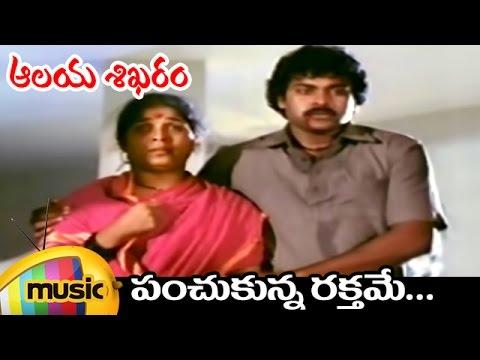 Chiranjeevi Telugu Hits  Aalaya Sikharam Telugu Movie  Panchukunna Raktame  Song  Sumalatha