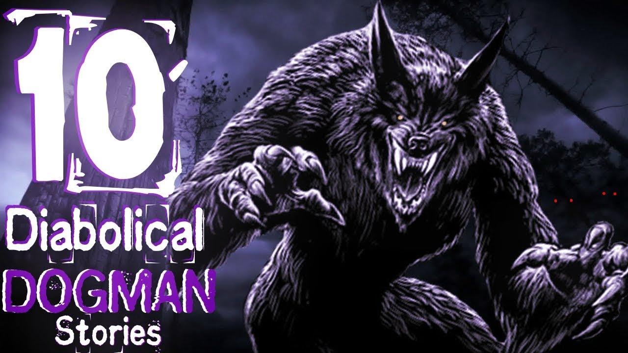 10 Diabolical Dogman Stories Youtube