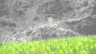 Long distance target shooting with Hatsan 125 Sniper (cal 5.5 mm)