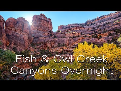 Fish & Owl Creek Canyons Overnight