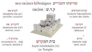 Racinekdsh