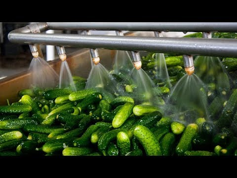 Crazy Food Processing Machines 2018 | Pickles