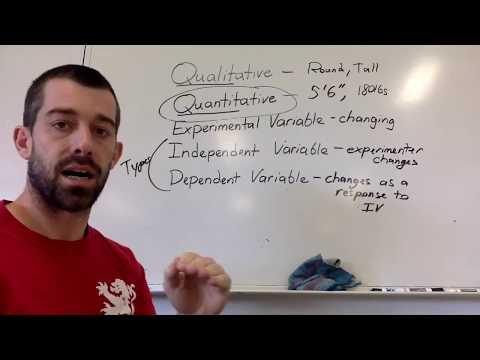 1.1 Experimental Variables