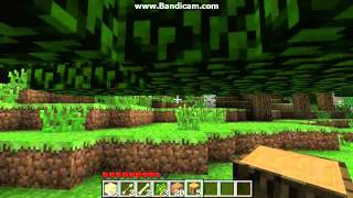 Lets Play Minecraft! ( No Commentary) Part 1: A New World!