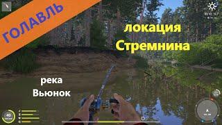 Русская рыбалка 4 река Вьюнок Голавль на мелкие воблеры