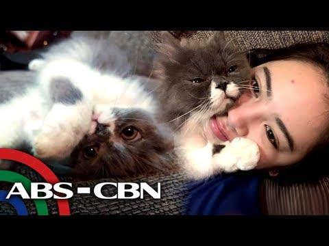 "Millennial Dance Princess Ella Cruz with her cat ""Blink"" | Rated K"