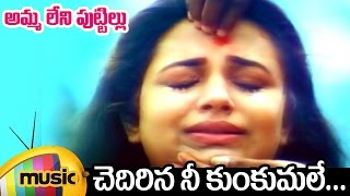 Ammaleni Puttillu Telugu Movie Video Songs | Chedirina Nee Kunkumale Full Song | Ooha | Shashi Kumar