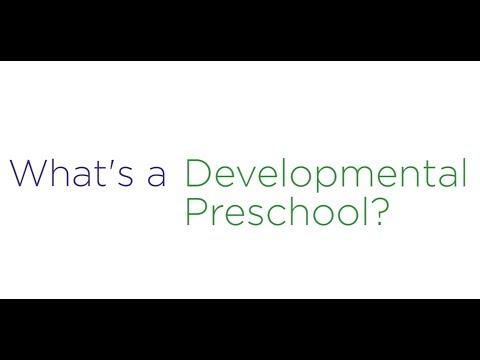 What's the Plus?   Developmental Preschool