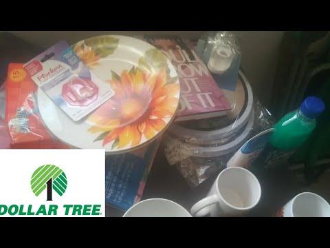 Dollar Tree Haul! Sunflower Plates, Assorted Crap