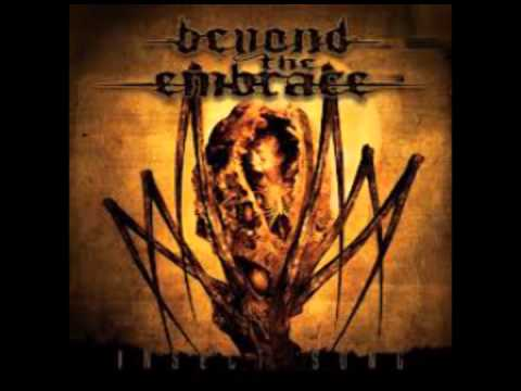 Beyond the Embrace - My Fall